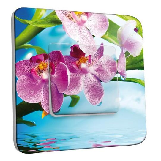 Interrupteur Décoré Poussoir - Orchidées