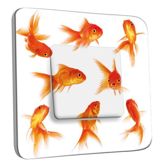 Interrupteur dcor simple va et vient poissons rouge for Poisson rouge prix truffaut