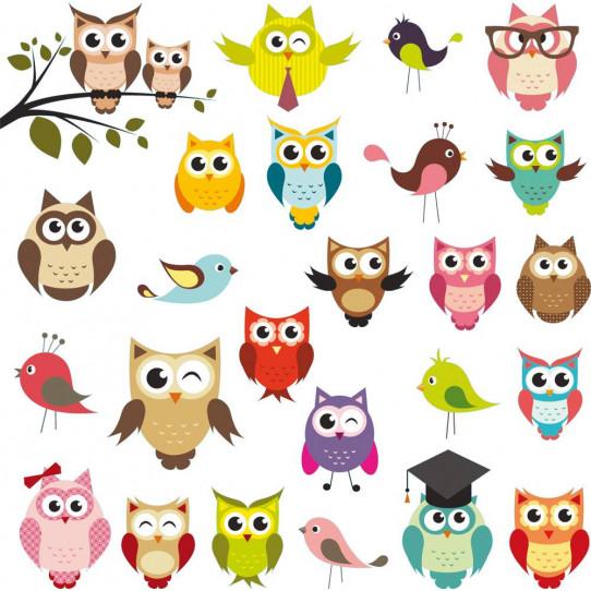 Kit Stickers hiboux et oiseaux