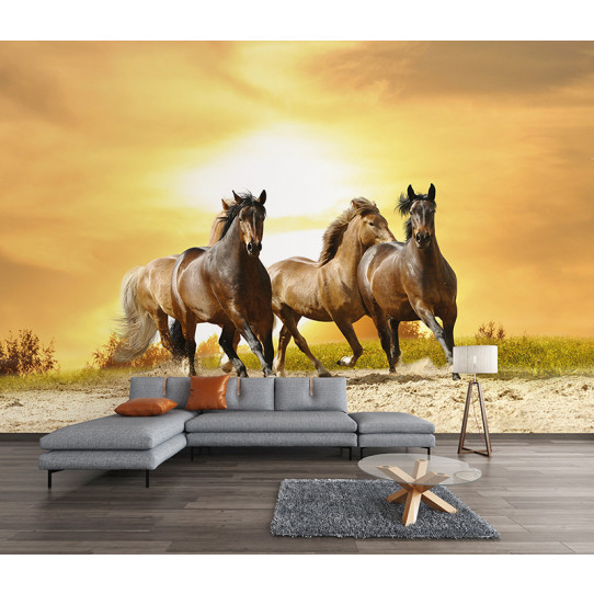 Papier peint chevaux