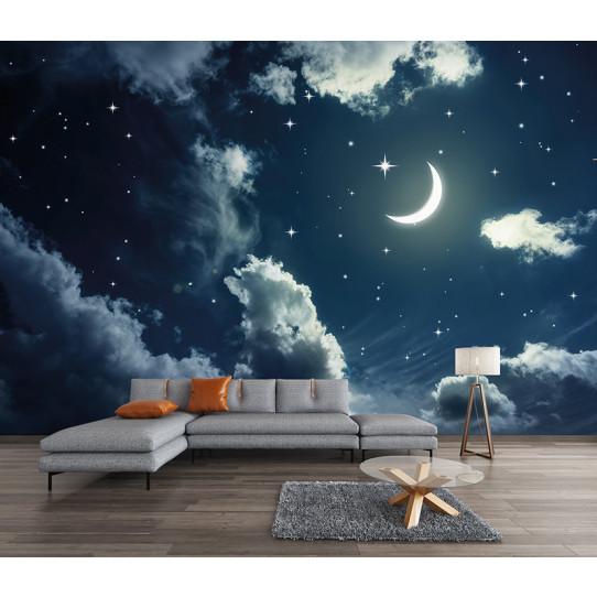 Papier peint ciel étoilé lune