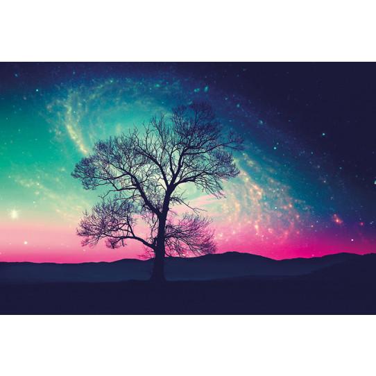 Poster - Affiche arbre ciel étoilé