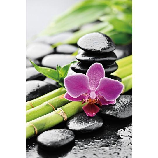 Poster - Affiche galets bambous orchidée