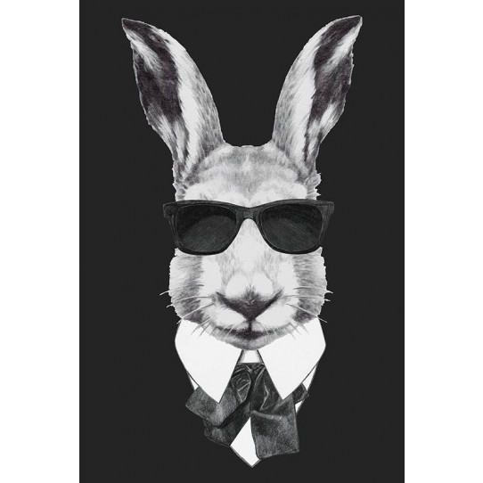 Poster - Affiche lapin hipster