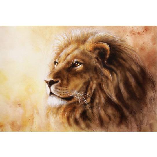 Poster - Affiche lion