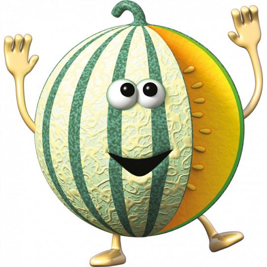 Stickers effet 3D- Melon