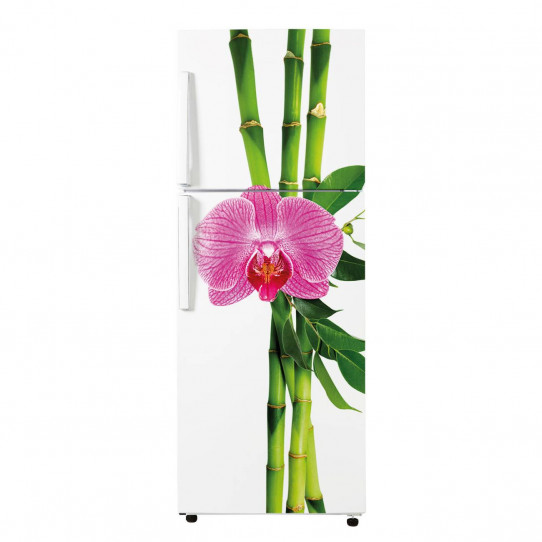 Stickers Frigo - bamboo 3
