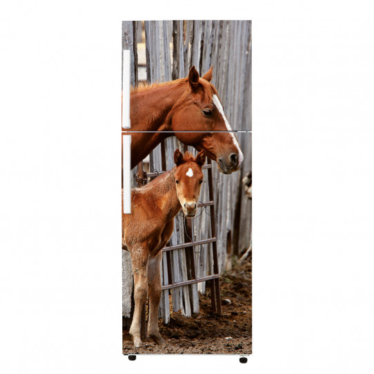 Stickers Frigo - Chevaux
