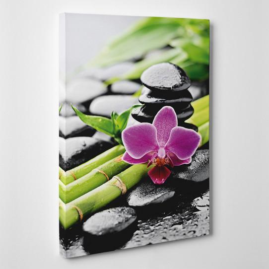 Tableau toile - Bambou Orchidée