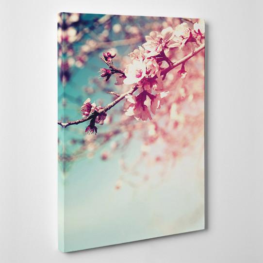 Tableau toile - Branche de cerisier