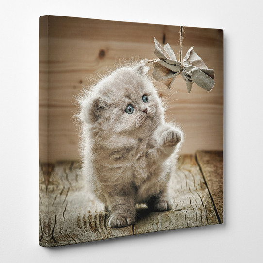Tableau toile - Chat 14