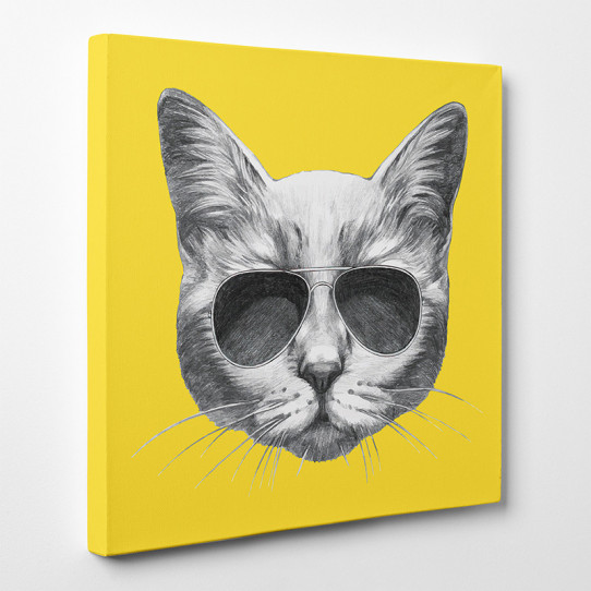 Tableau toile - Chat 5
