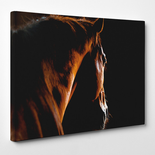Tableau toile - Cheval 13