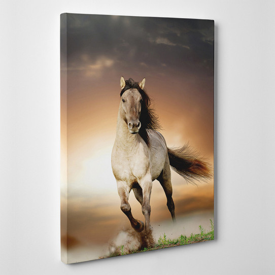 Tableau toile - Cheval