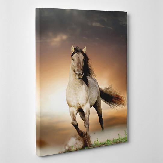 Tableau toile cheval des prix 50 moins cher qu 39 en magasin - Tableau de cheval ...