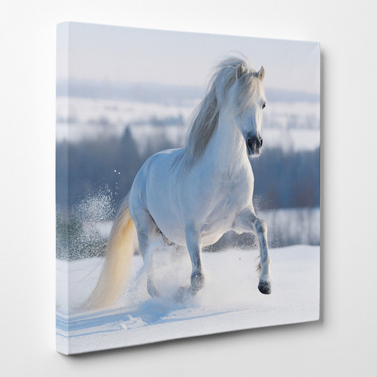 Tableau toile - Cheval 4