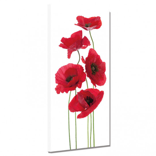 Tableau toile - Coquelicots 10