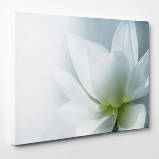 Tableau toile - Fleur 2