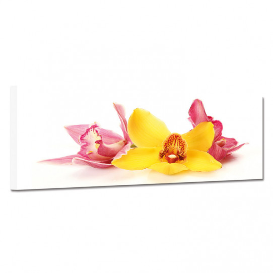 Tableau toile - Fleurs 29