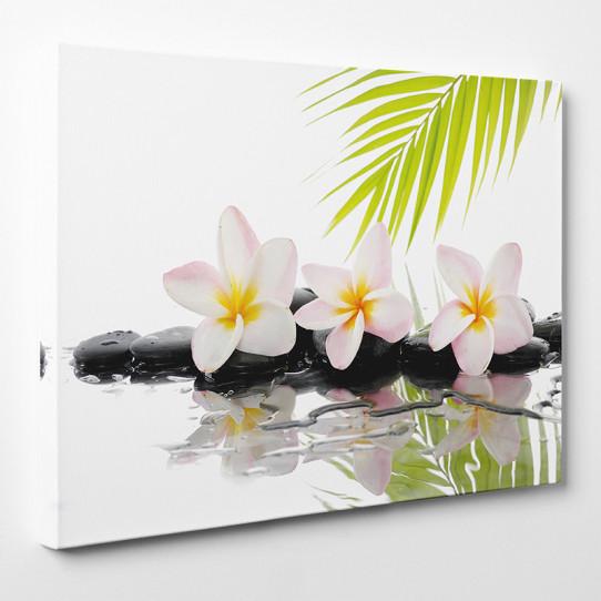 Tableau toile - Fleurs Galets 7