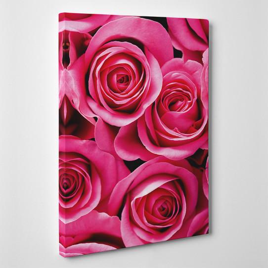 Tableau toile - Roses Zoom 2