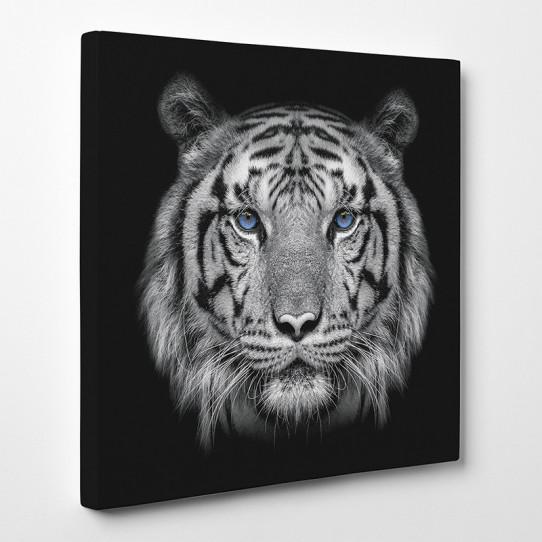 Tableau toile - Tigre 17