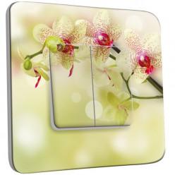 Interrupteur Décoré Double Va et Vient - Branche d'Orchidée
