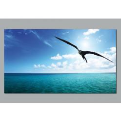 Poster Sea