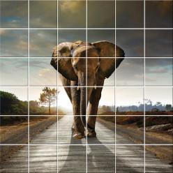 Stickers carrelage éléphant