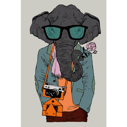 Poster - Affiche éléphant hipster