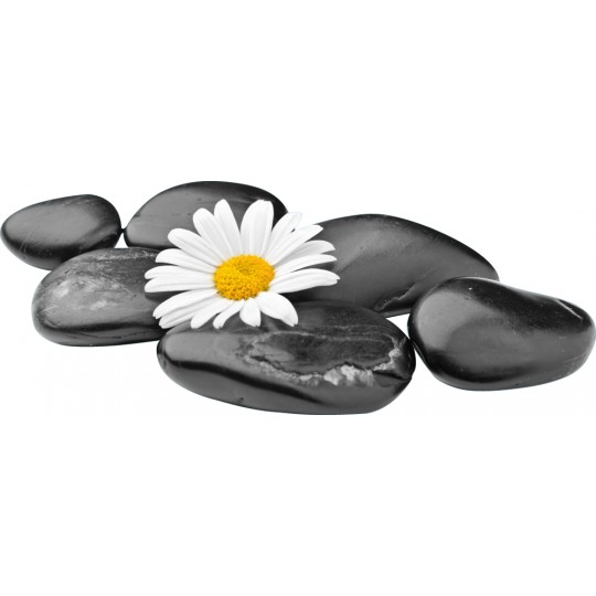 Stickers galets fleur