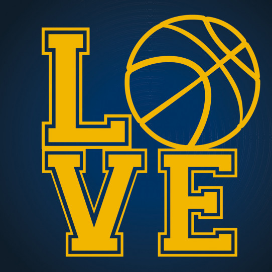 Autocollant Stickers ado love basketball